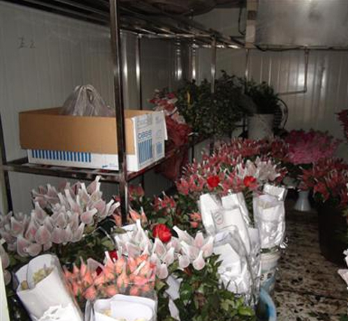 鲜花保鲜冷库